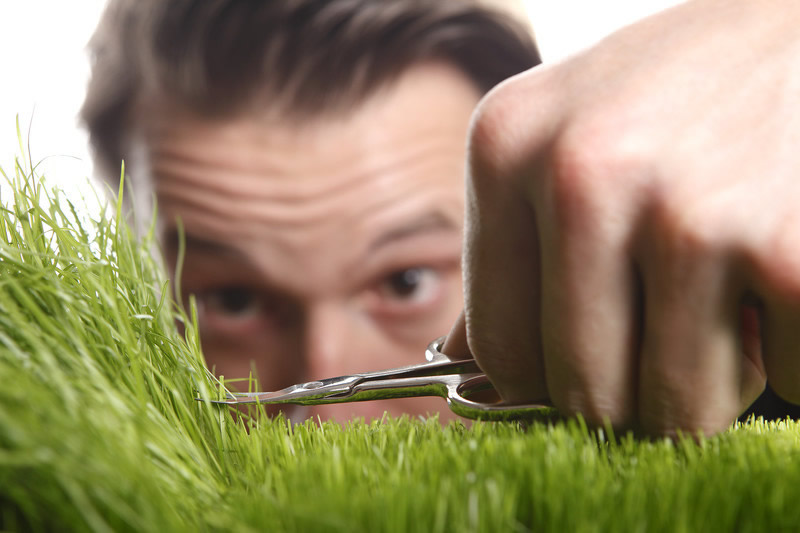 how short to cut grass