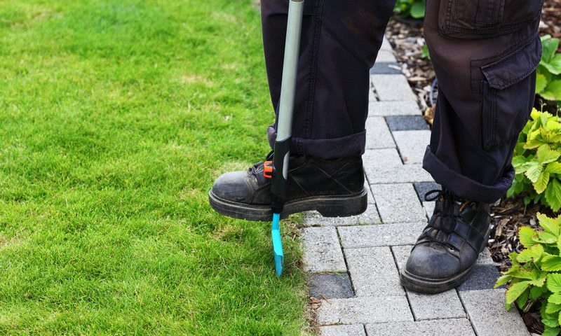 Edging Your Lawn