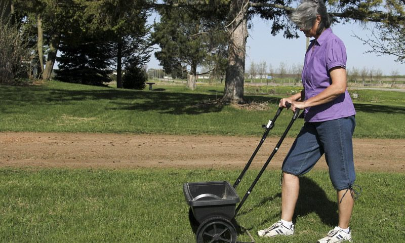Way to Fertilizing Your Lawn