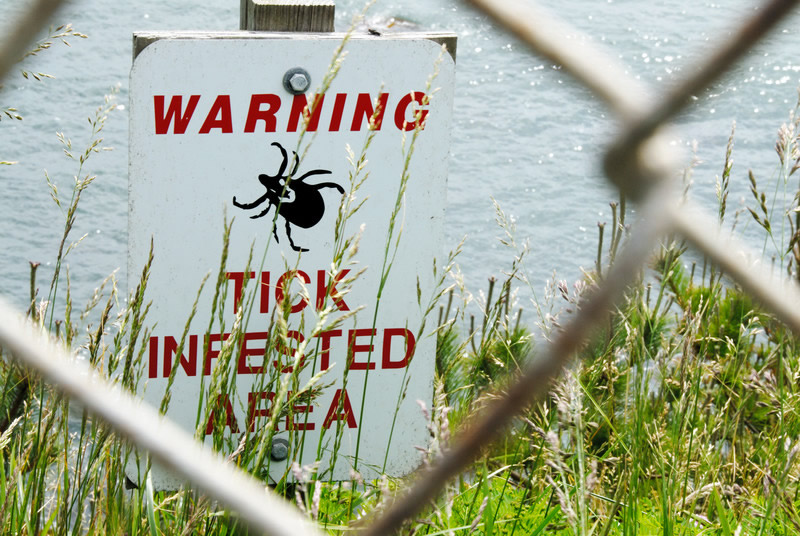 Yard and Tick Control
