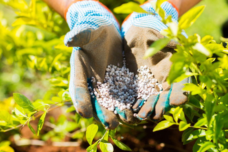 Introduction To Fertilizers and Pesticides