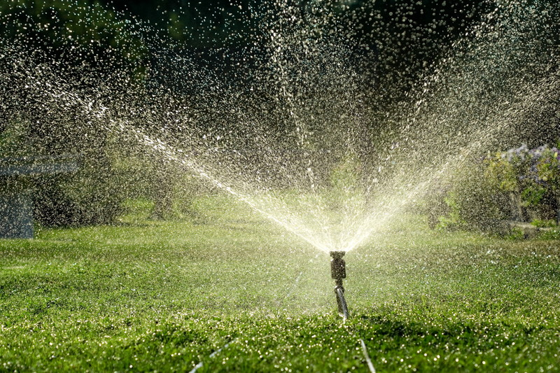 Irrigation System in Florida